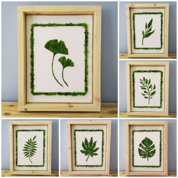 <strong>cadres végétalisés-feuilles</strong> <em></em><br  /></p><p>