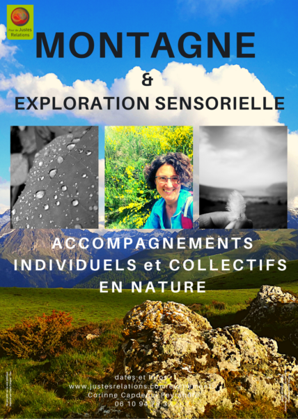 <strong>Montagne et exploration sensorielle</strong> <em></em><br  /></p><p>